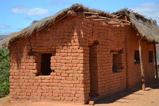 Madagascar RisaieSavana3