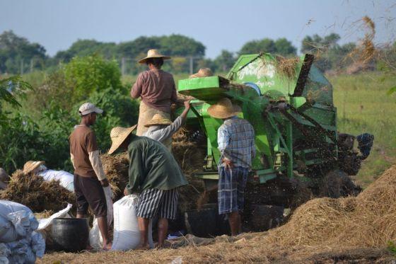 Birmania1637